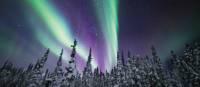 Admirez le spectacle des aurores boréales, Territoires du Nord-Ouest | Martina Gebrovska