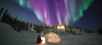 Apprenez à faire un igloo sous les aurores boréales, Territoire du Nord-Ouest | Martina Gebrovska