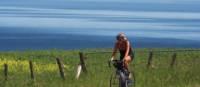 Rouler le long de la Véloroute des Bleuets, Saguenay-Lac-St-Jean | Charles-David Robitaille