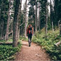Lace-up your hiking boots, take a deep breath of forest air
