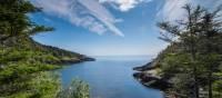 A wilderness path along Newfoundlan's Avalon Peninsula | Sherry Ott