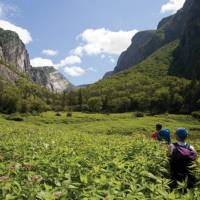 Backcountry Hiking in Gros Morne National Park