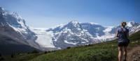 Randonnée en montagne dans le parc national de Jasper | Ryan Bray